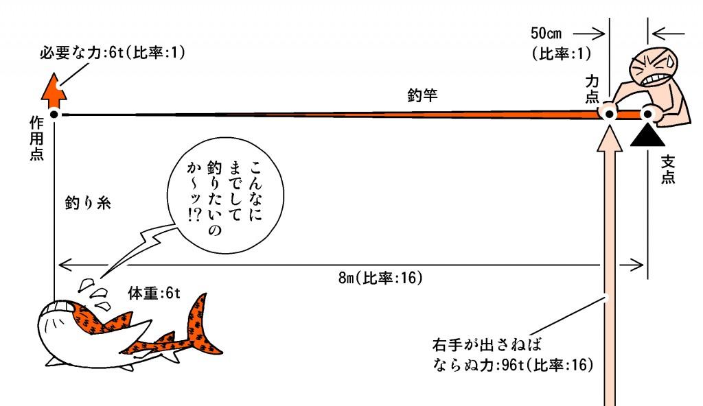 『どうぶつの森』ジンベエザメ図A
